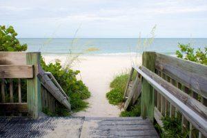 dog | dog friendly | dog friendly beaches | florida | florida beaches | beaches | beach | dog beaches