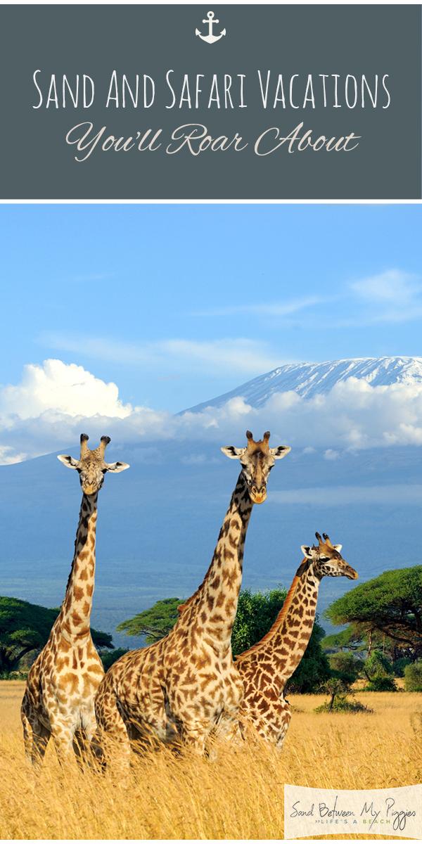 safari | sand | vacation | sand and safari | sand and safari vacation | vacation destinations | destinations