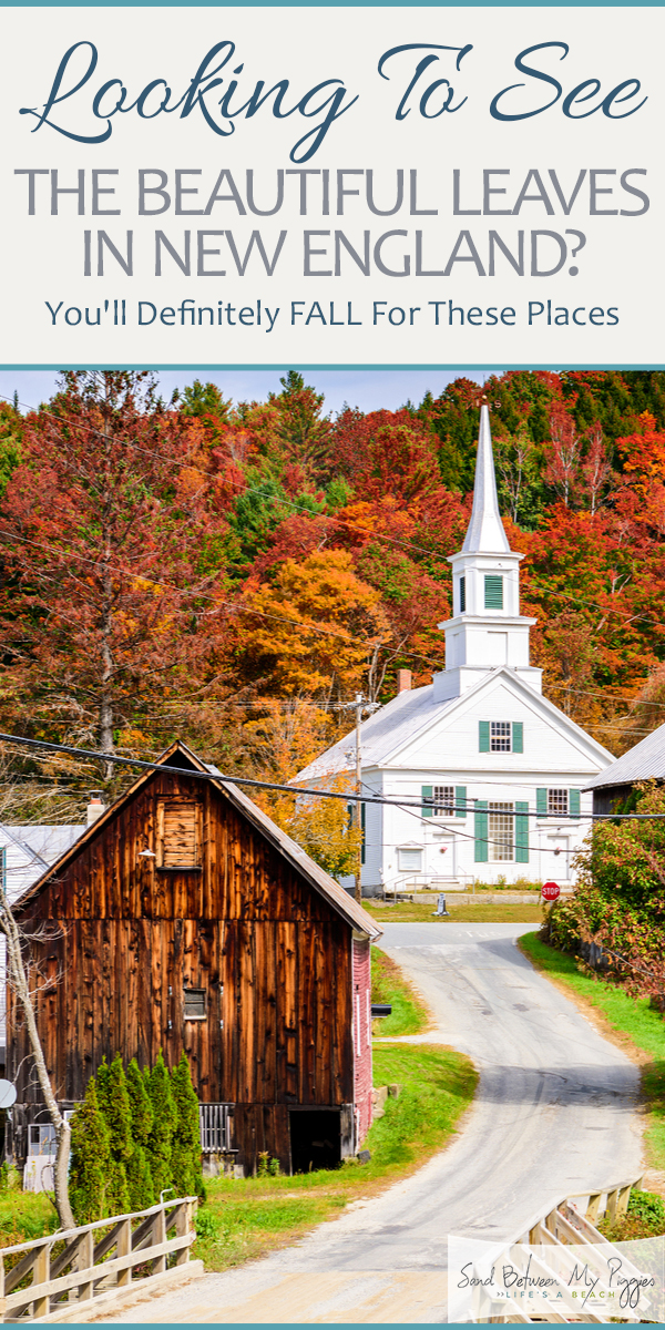 Leaves | fall leaves | fall | New England | New England in the fall | fall colors