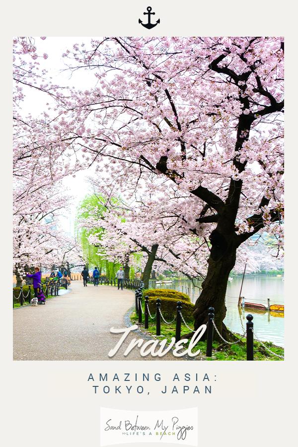 Tokyo | Asia | Japan | Tokyo Japan | Travel Asia | Travel Japan | Travel Tokyo | Vacation | vacation destinations